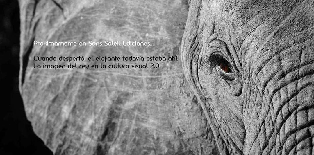 Cuando despertó, el elefante todavía estaba ahí. La imagen del rey en la cultura visual 2.0