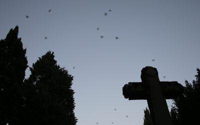 Zakatumba. I Festival de cultura de la muerte de Vitoria-Gasteiz (del 27 de octubre al 5 de noviembre)